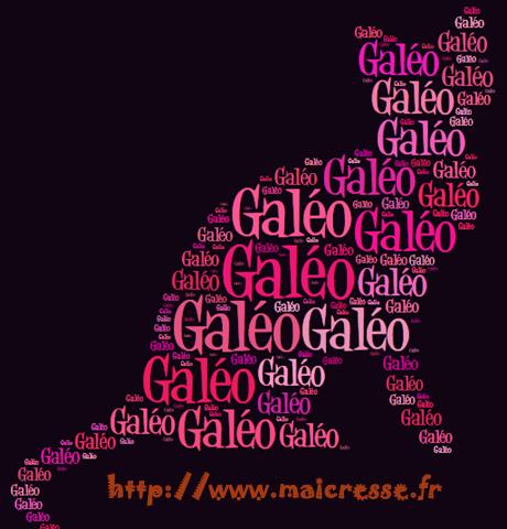 galeo-chat-avec-des-mots-silhouette