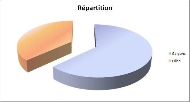 Graphique camembert de répartition des âges